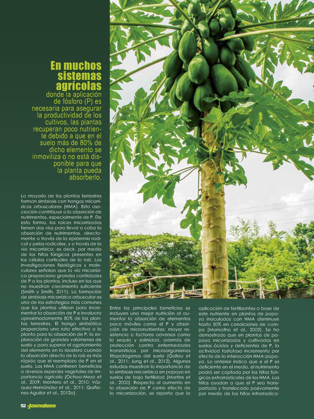 Index of /edicionesdigitales/images/images/1369-ElJornalero